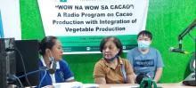 SOA, cacao, misamis occidental,