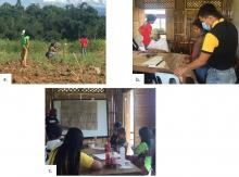 Impasug-ong Corn famer participants doing the (a) germination count in the field, (b) processing, and (c) reporting.