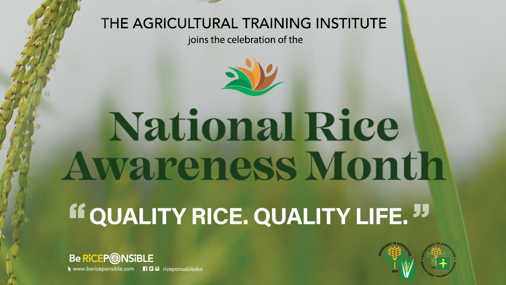 November is National Rice Awareness Month
