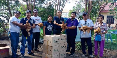 Awarding of free range chicken to farmer-beneficiaries.  In the center is MR. Emiliano Camba, Municipal Agriculturist of San Mateo, Isabela, in his right is Dr. maurieann Turingan, ng Livestock Focal Person of ATI-RTC 02.