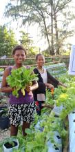Ati kids smiling while holding their lettuce harvest.