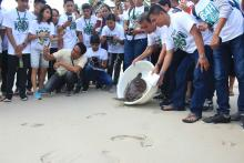 4-H members witness and join the releasing of sea turtle, headed by the Dapitan City Agriculturist Cyril A. Patangan during the 8th Regional 4-H Summer Youth Camp.