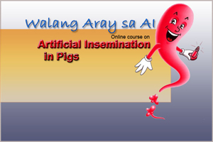 online course on artificial insemination in pigs