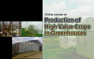 online course on greenhouse crops