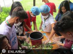 Participants making nature's input.