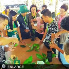 Pototan AEWs, OFWs, farmers train in cacao production, post-harvest handling, marketing