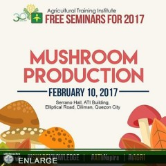 Free Seminar on Mushroom Production